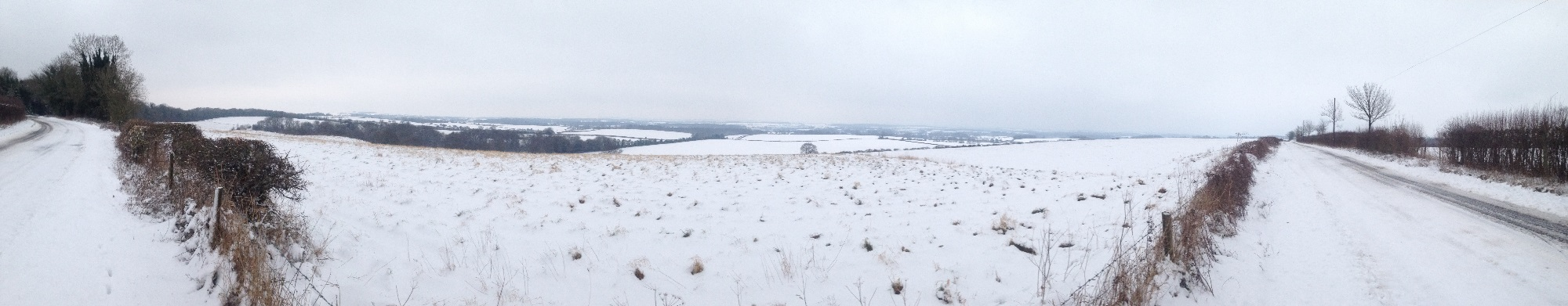 Winter view of Kilmeston Down and beyond