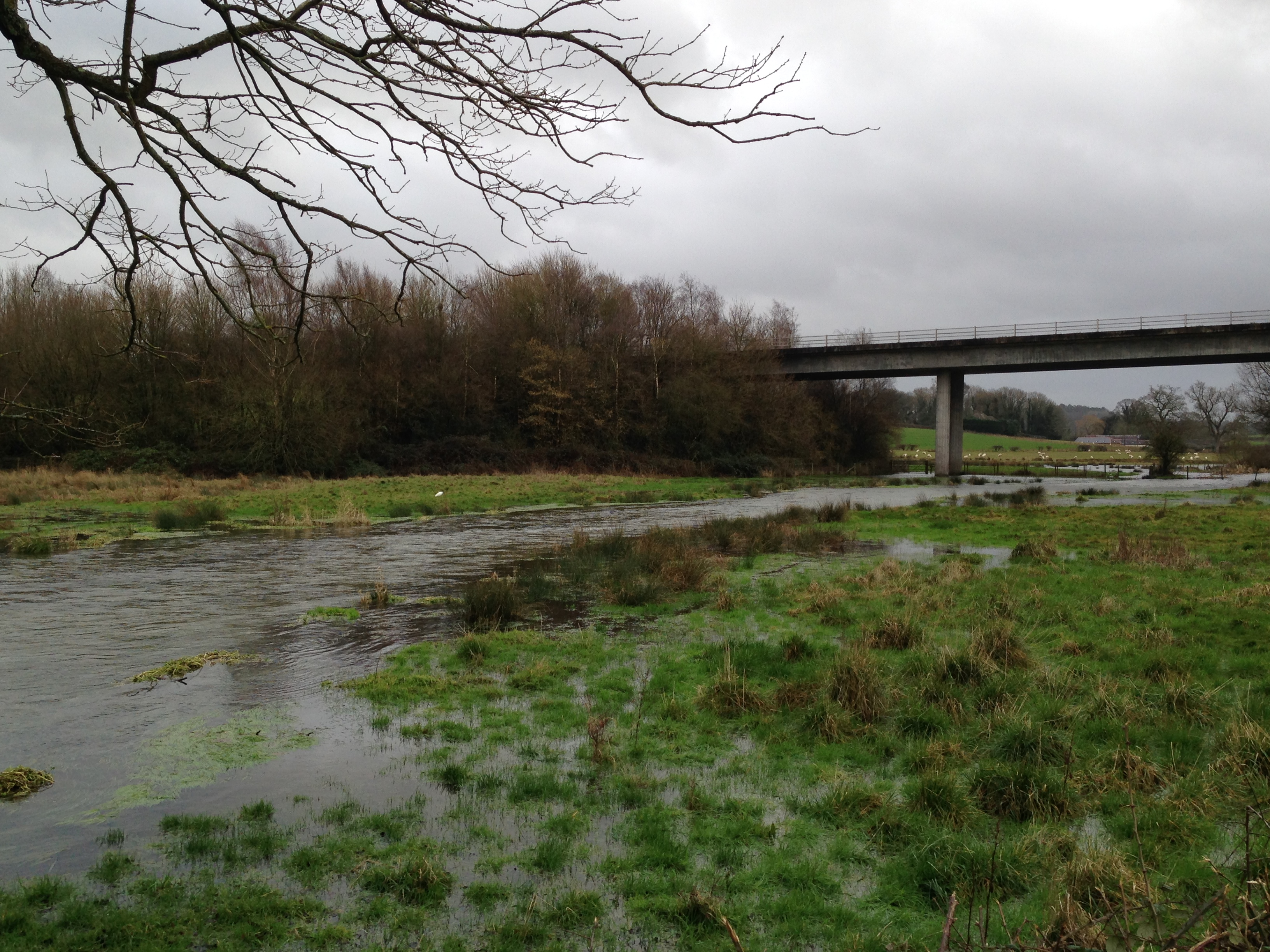 River Itchen and Alresford Bypass